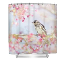 Yellow-rumped Warbler In Spring Blossoms Shower Curtain