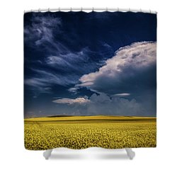 Yellow Sea Under The Blue Sky  Shower Curtain