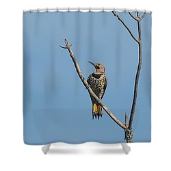 Yellow Shafted Flicker Front Shower Curtain