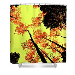 Yellow Sky, Burning Leaves Shower Curtain