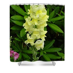 Yellow Snapdragon Shower Curtain