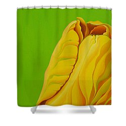 Yellow Somebuddy Shower Curtain
