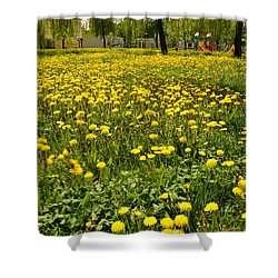 Yellow Spring Carpet Shower Curtain by Henryk Gorecki