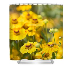 Yellow Squared 2 Shower Curtain