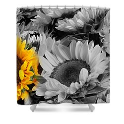 Yellow Sunflower On Black And White Shower Curtain