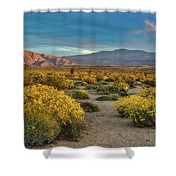 Shower Curtain featuring the photograph Yellow Sunrise by Peter Tellone