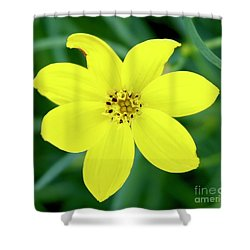 Yellow Threadleaf Shower Curtain