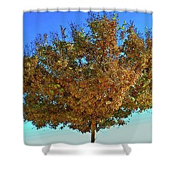Yellow Tree Blue Sky Shower Curtain