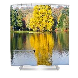 Yellow Tree Reflection Shower Curtain