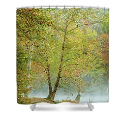 Shower Curtain featuring the photograph Yellow Trees by Iris Greenwell