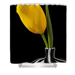 Yellow Tulip In Striped Vase Shower Curtain by Garry Gay