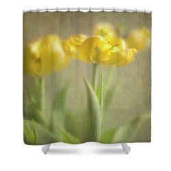 Shower Curtain featuring the photograph Yellow Tulips by Elena Nosyreva