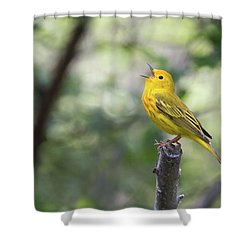 Yellow Warbler In Song Shower Curtain
