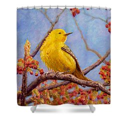 Yellow Warbler Shower Curtain by Joe Bergholm