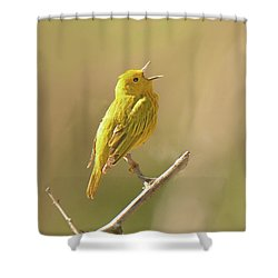 Yellow Warbler Song Shower Curtain
