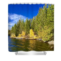 Golden Waters Shower Curtain by Jennifer Lake