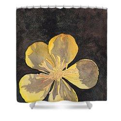 Yellow Wild Flower Shower Curtain by Ken Powers