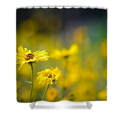 Yellow Wild Flowers Shower Curtain by Kelly Wade