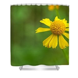 Yellow Wildflower Shower Curtain by Christopher L Thomley