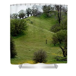 Shower Curtain featuring the photograph Yellow Wildflowers And Oak Trees by Roger Mullenhour