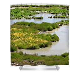 Yellow Wildflowers At Mud Volcano Area In Yellowstone National Park Shower Curtain by Louise Heusinkveld