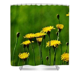 Yellow Wildflowers Shower Curtain