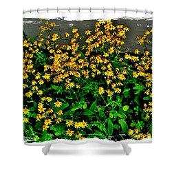 Yellow Wildflowers Shower Curtain by Marsha Heiken