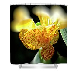 Yellow With Red Spots Shower Curtain by Douglas Barnard
