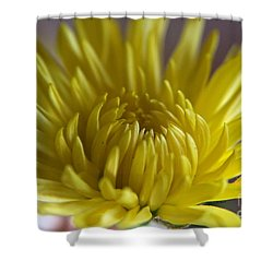 Shower Curtain featuring the photograph Yellow Yellow by Yumi Johnson