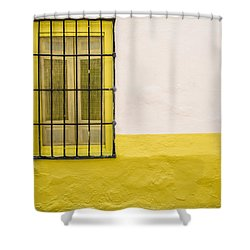 Yellowed Wall Shower Curtain