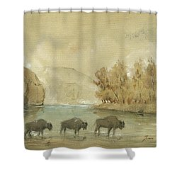 Yellowstone And Bisons Shower Curtain
