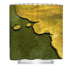 Yellowstone Art. Yellow And Green Shower Curtain by Ausra Huntington nee Paulauskaite