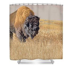 Yellowstone King Shower Curtain
