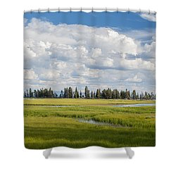Yellowstone Meadow Shower Curtain