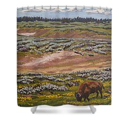 Shower Curtain featuring the painting Yellowstone Reflections by Erin Fickert-Rowland