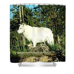 Yellowstone Wolf Pack Member Shower Curtain