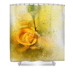 Yelow Rose Shower Curtain