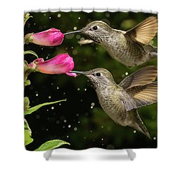 Shower Curtain featuring the photograph Yes We Are Twins by William Lee