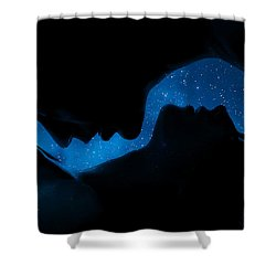 Ying-yang Shower Curtain by Sue M Swank