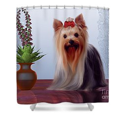Yorkshire Terrier Shower Curtain by Corey Ford