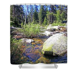 Yosemite Hidden Stream Shower Curtain