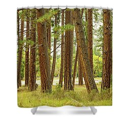 Yosemite Shower Curtain