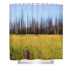 Yosemite Juxtaposition By Michael Tidwell Shower Curtain