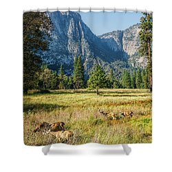 Yosemite Valley At Yosemite National Park Shower Curtain