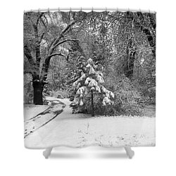 Yosemite Valley Winter Trail Shower Curtain by Underwood Archives