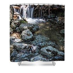Yosemite View 17 Shower Curtain by Ryan Weddle