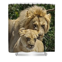 Shower Curtain featuring the photograph You Are Mine by Ramabhadran Thirupattur