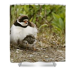 You Can't See Me Now . . . Shower Curtain