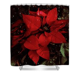 You Know It's Christmas Time When... Shower Curtain by Elaine Malott