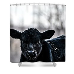 You Lookin' At Me? Shower Curtain
